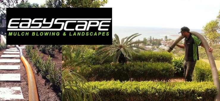 Easy Scape Davistown Central Coast Region - NSW | OBZ