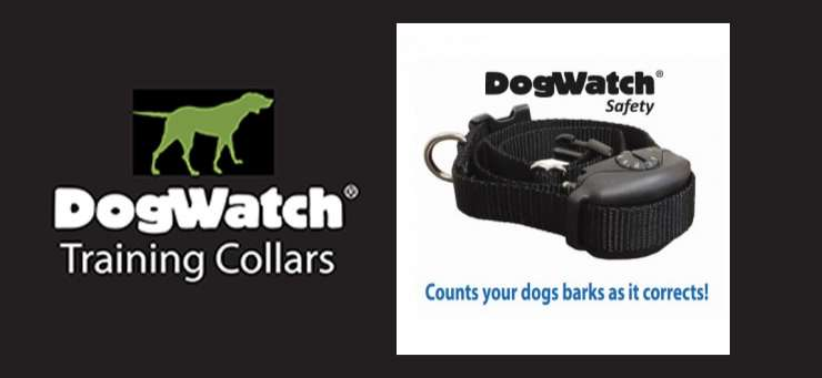 BigLeash Remote Training Collars Chuwar Brisbane Region - QLD | OBZ