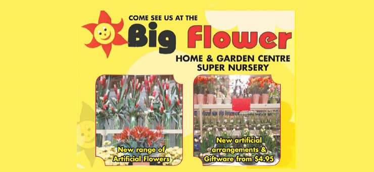 Big Flower Plant Nursery Ourimbah Central Coast Region - NSW | OBZ